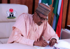 Buhari makes a new appointment in 2020