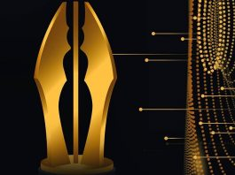 List of AMVCA 2020 Nomination, Voting Categories