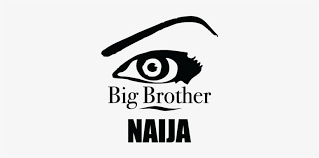 About Big Brother Naija (BBNaija) 2020, Application, Starting Date, Audition, Housemates.
